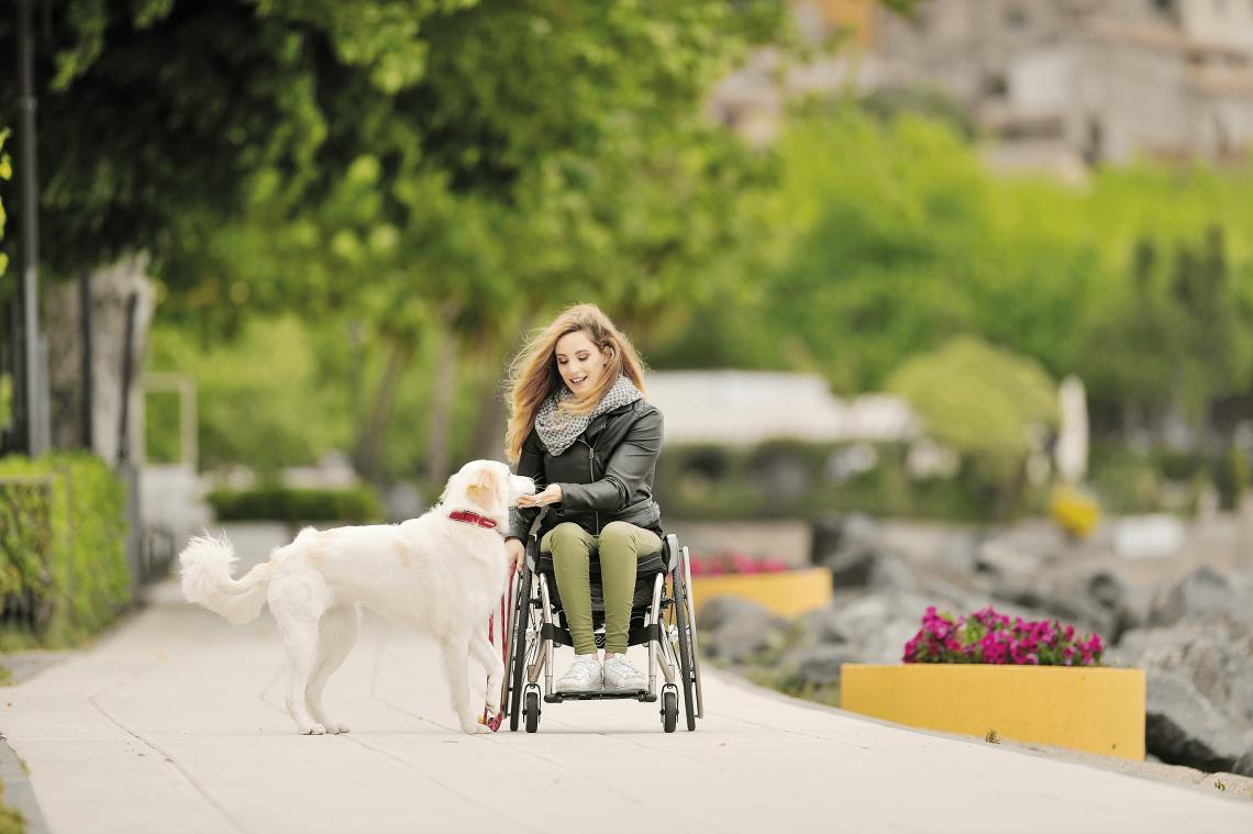 Offcarr wheelchair