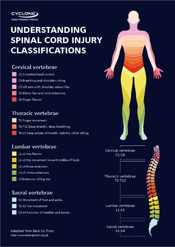 Spinal cord injury classifications